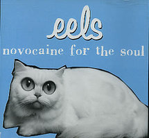Eels - Novocaine for the soul