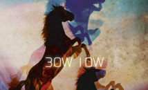 Nouvel album de Bow Low