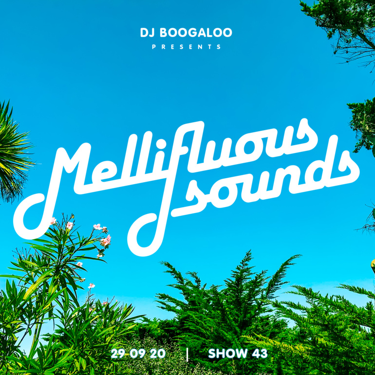 Mellifluous Sounds 43